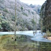 兵庫、摩耶山 池と氷