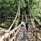 徳島、祖谷かずら橋