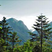 登山道より甲斐駒ヶ岳を見る