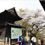滋賀、大津三井寺