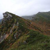 三ノ沢岳登山道から